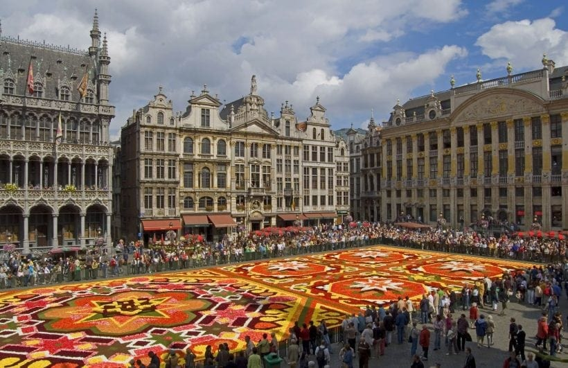 flower carpet in brussels view from the city council