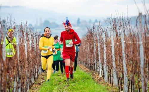 מרתון הבוז'ולה||מרתון הבוז'ולה|מרתון הבוז'ולה