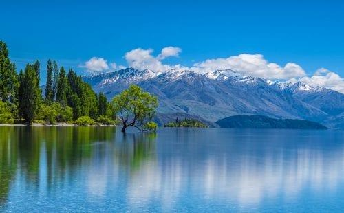 |אל על תחלץ קבוצת מטיילים שנתקעו בניו זילנד