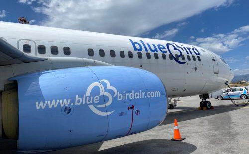חוזרת לטוס: בלו בירד
