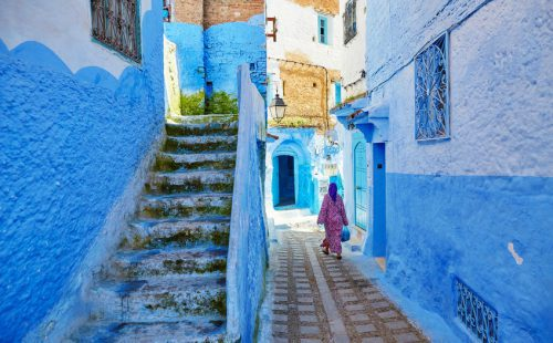 השטיח המעופף נערכת להפעיל טיסות למרוקו