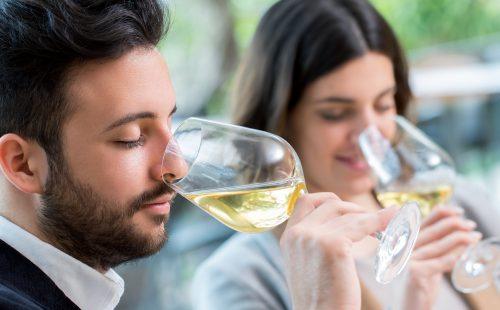 טעימת יין לבן