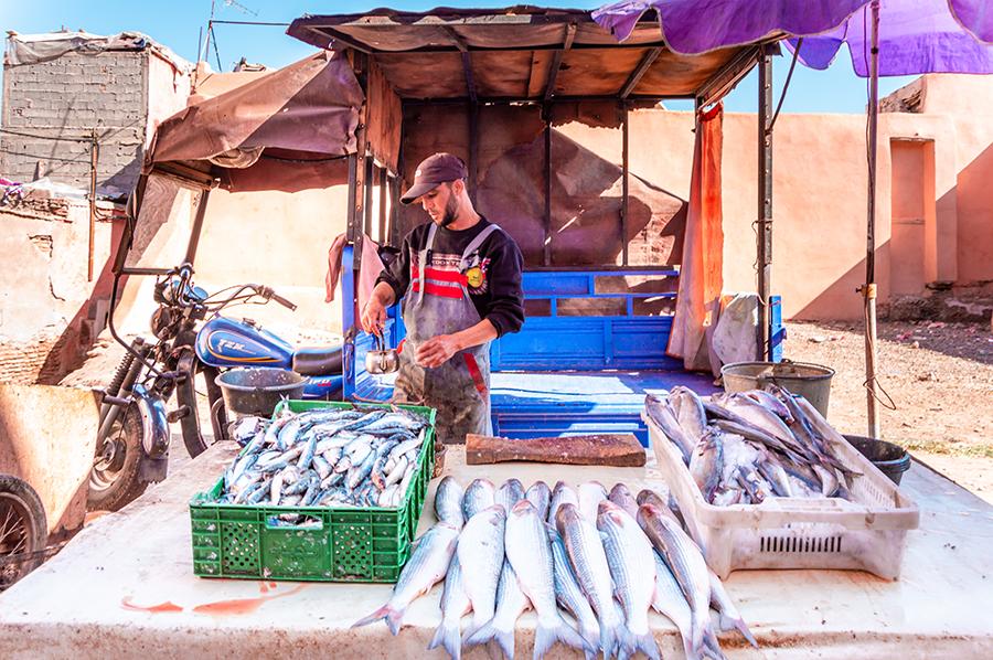 דוכן דגים במרקש, מרוקו