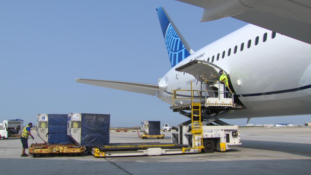 יונייטד קרגו צפויה להטיס השבוע לישראל חיסוני קורונה