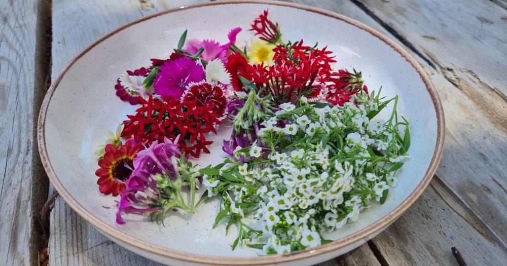 ירוקל׳ה - פרחי מאכל