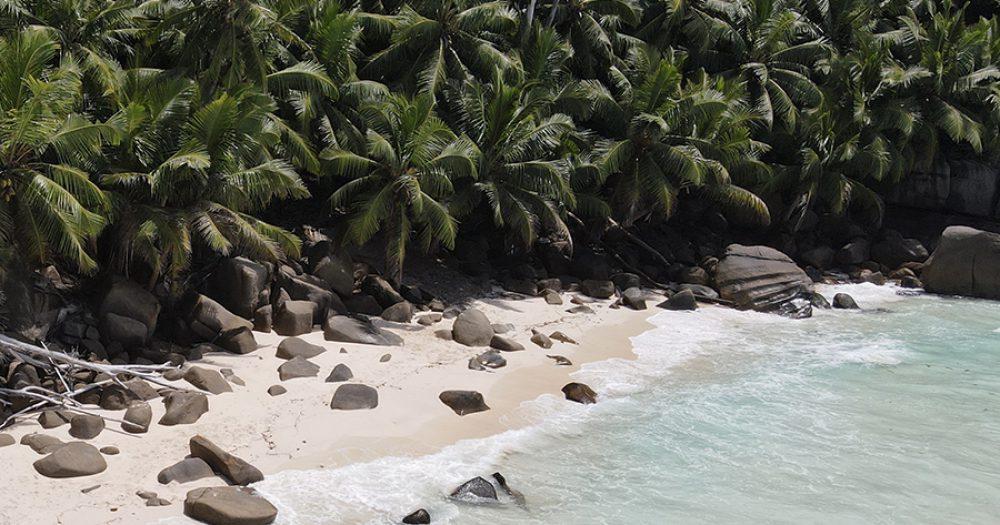 חופי סיישל. צילום מאי יצחייק